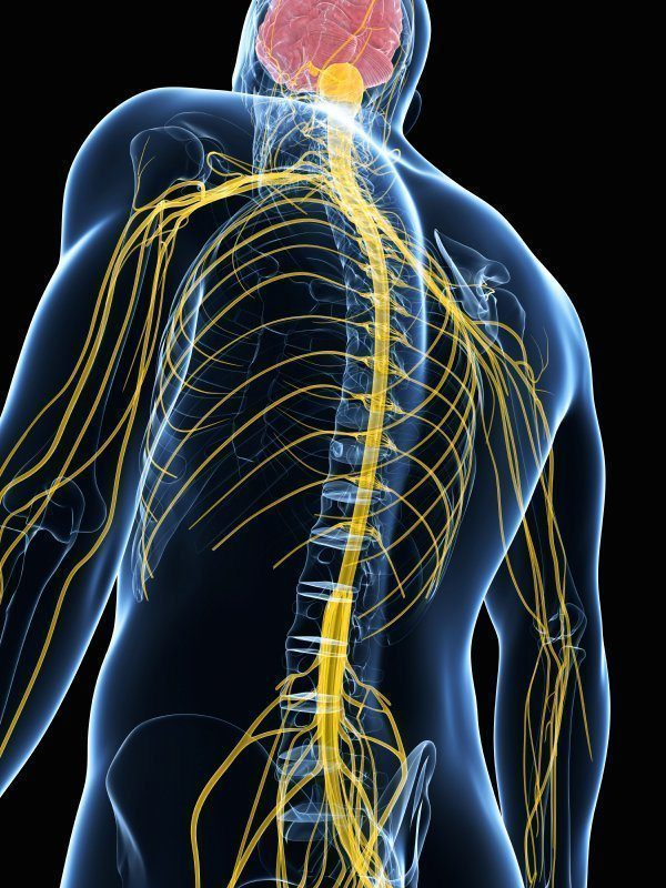 Neuropraxia (Nerve Injury) – Causes and Treatment
