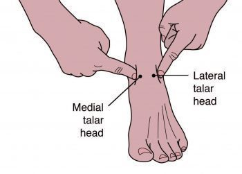 Παλαίσθητο κεφάλι μεσαίου ταλάτ - Chiropractor του Ελ Πάσο