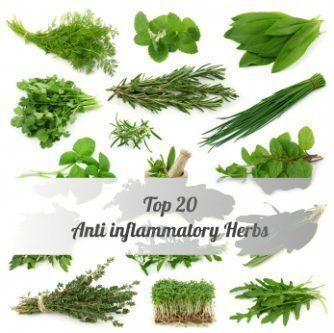 Топ-20-Противовоспалительные-Herbs.jpg