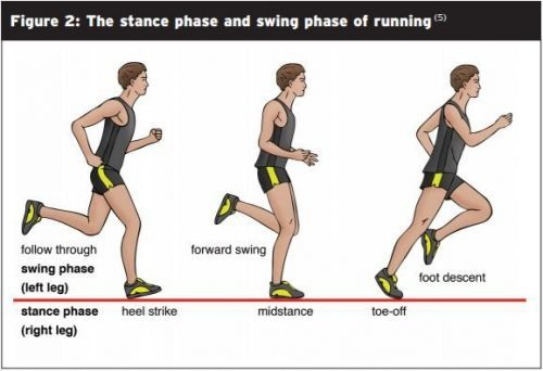Running Biomechanics Diagram - El Paso Chiropractor