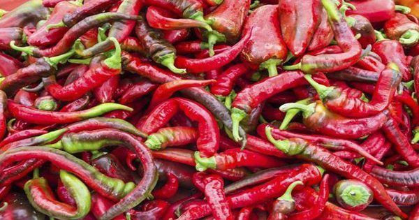 blog picture of a bunch of red peppers