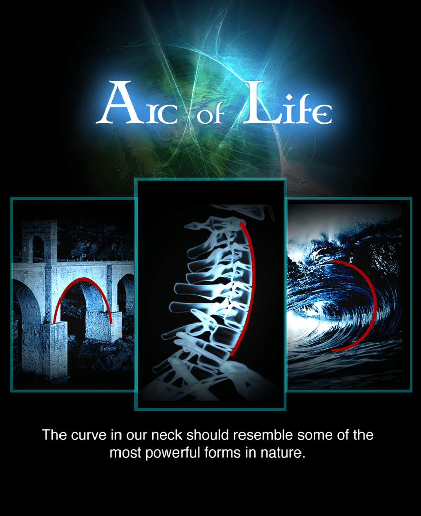 blog picture of bridge arc the spine and a wave with the words the arc of life