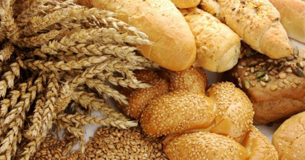 blog picture of breads and wheat