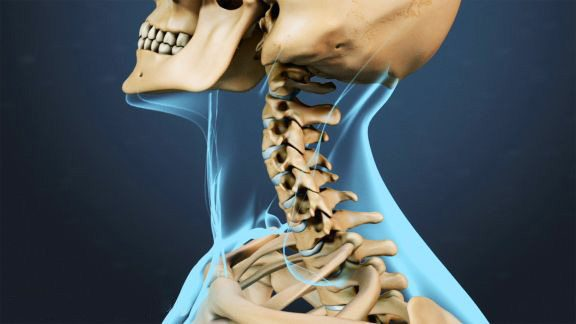 blog picture of anatomical cervical spine range motion
