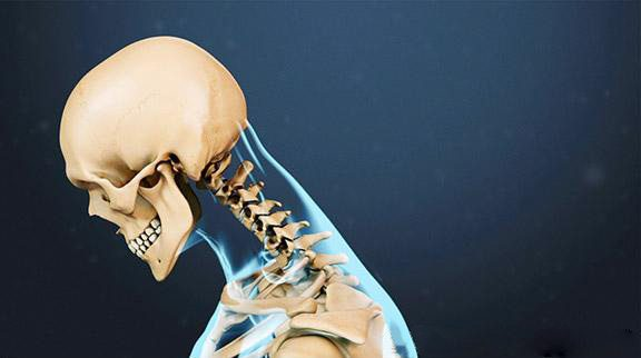 blog picture of skeleton neck looking down