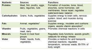 Gráfico de nutrientes