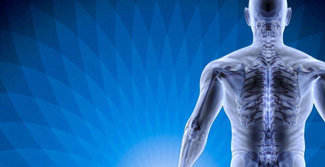 blog illustration of human body