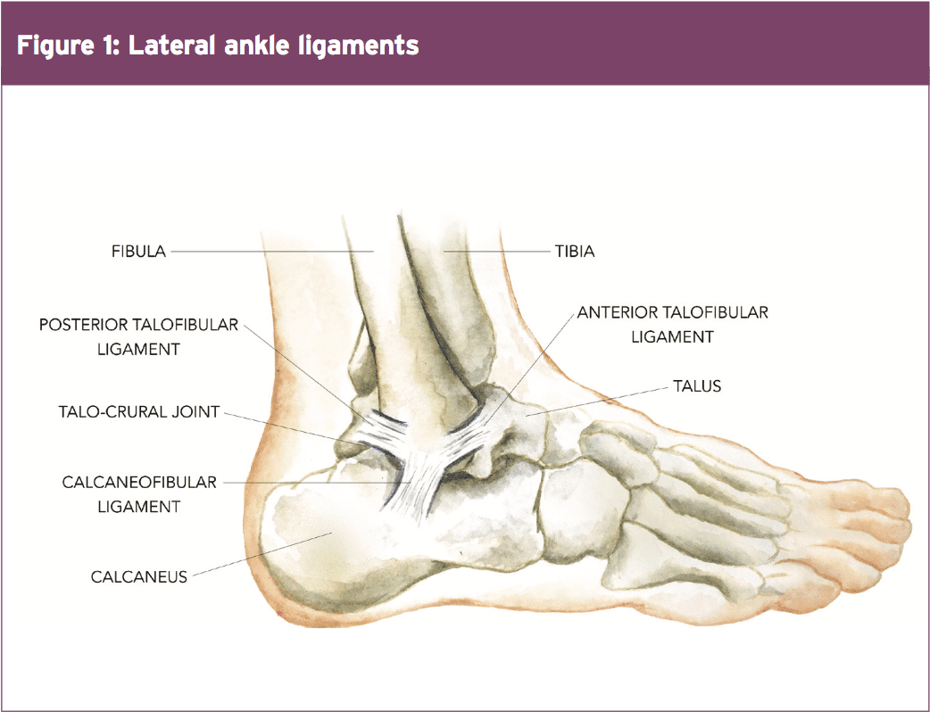 11860 Vista Del Sol, Ste. 128 Ankle Injury, Function and Chronic Pain El Paso, Texas