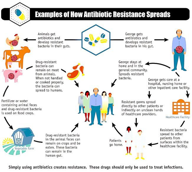 antibiotics and bacteria resistance el paso tx.