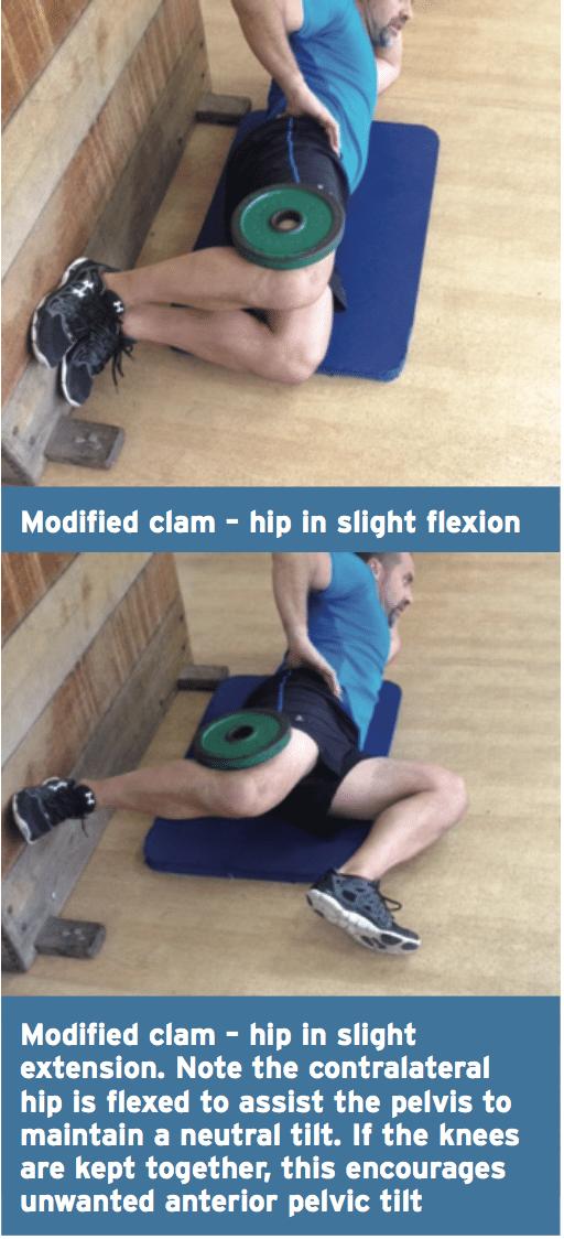 modified clam