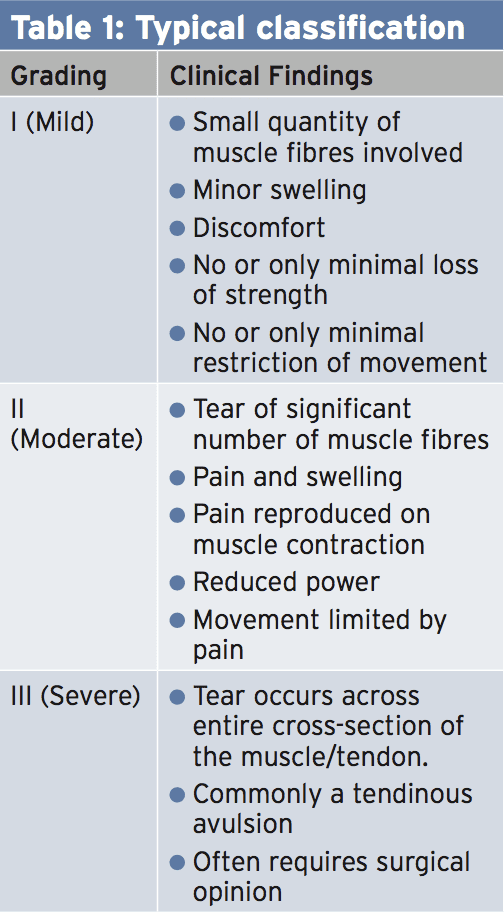 how acute hamstring pull occurs Sudden twinges of pain during activity will occur they may notice some swelling and pain will be reproduced when pressing in on the hamstring muscle ( palpating) as well as trying to bend the knee against resistance a grade 3 hamstring strain is a severe injury involving a tear to half or all of the muscle the athlete may.