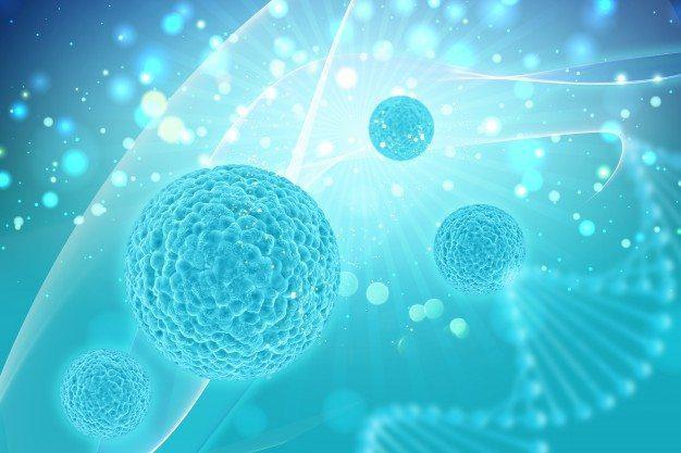 medicamento funcional células biológicas