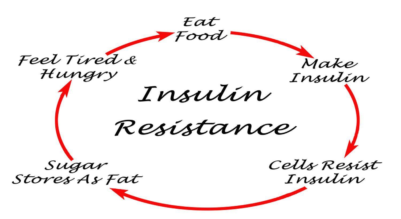 metabolinis atsparumas insulinui 1