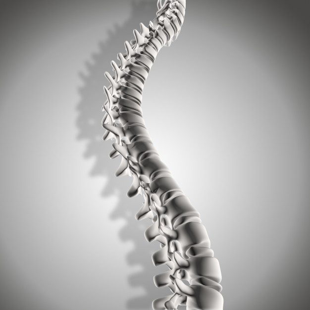 11860 Vista Del Sol, Ste. 126 SCI-Spinal Cord Injury Chiropractic Treatment El Paso, Texas