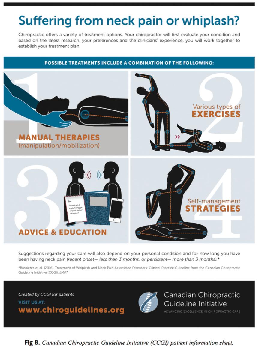 Figure 8 CCGI Patient Information Sheet