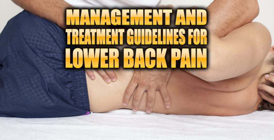 Management and Treatment Guidelines for Low Back Pain | El Paso, TX Chiropractor