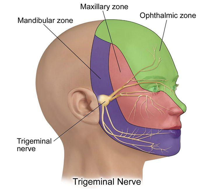 cranial el paso tx.