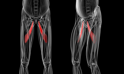 Athletic Pubalgia Mechanism of Injury | El Paso, TX Chiropractor