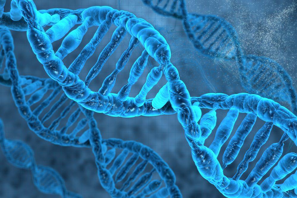 Nrf2活性化を実証するDNA鎖のクローズアップイメージ。