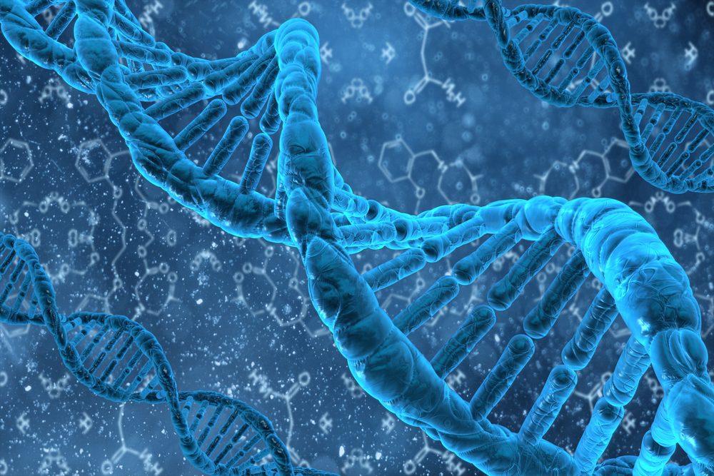 Plastiliga DNA-Metilation | El Paso, TX Kiropractoro