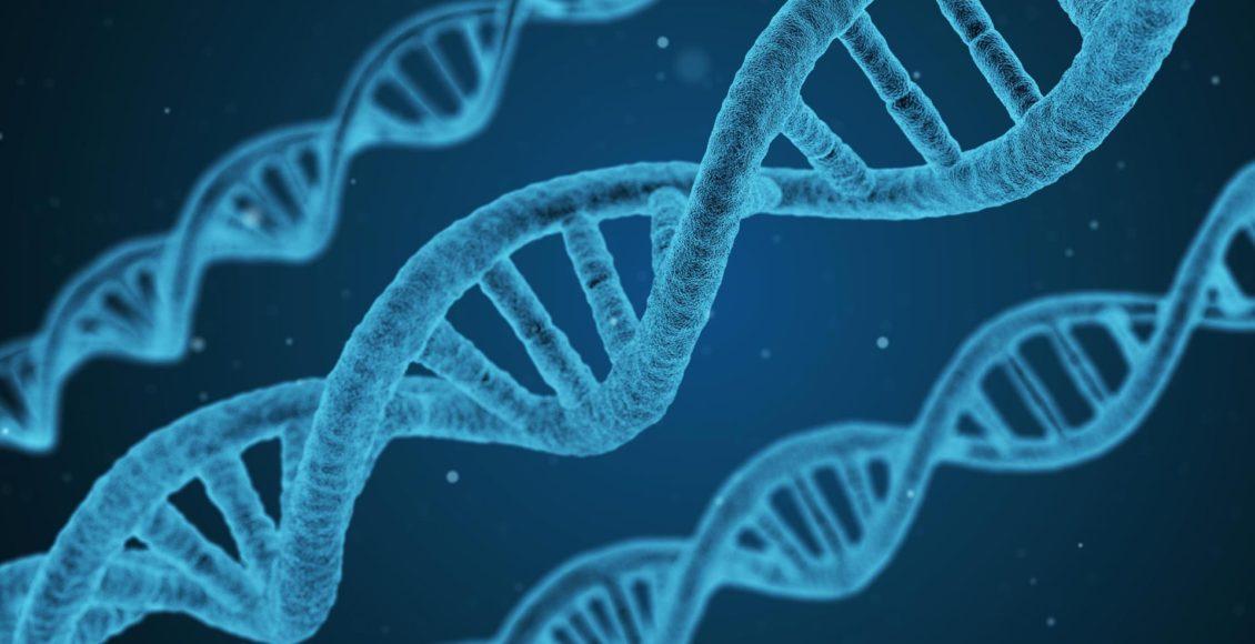 La importancia del soporte de metilación | El Paso, TX Quiropráctico