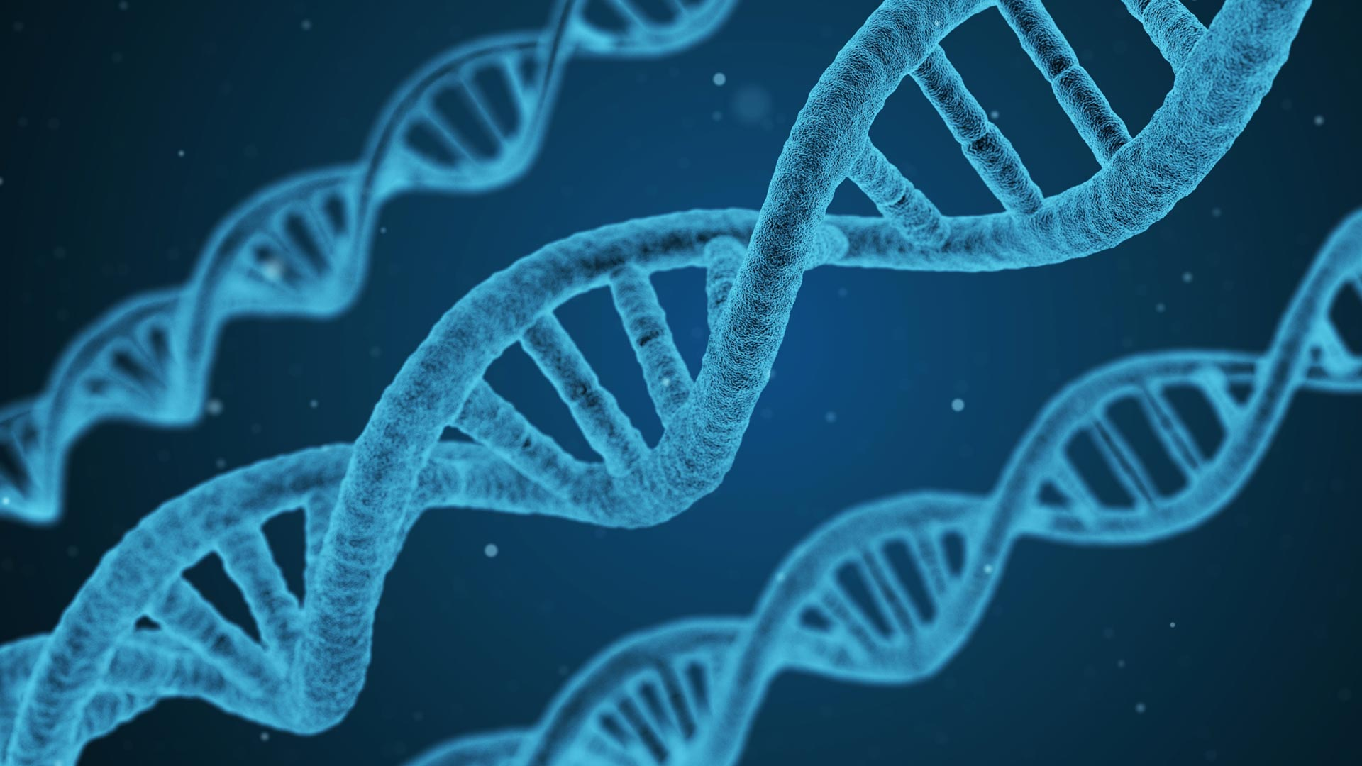 The Importance Of Methylation Support | El Paso, TX Chiropractor