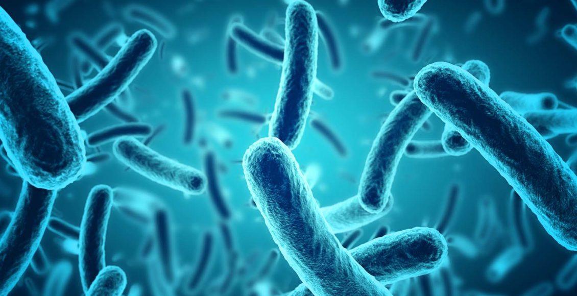 Роль микробиома в метилировании ДНК | Эль Пасо, Техас Хиропрактик