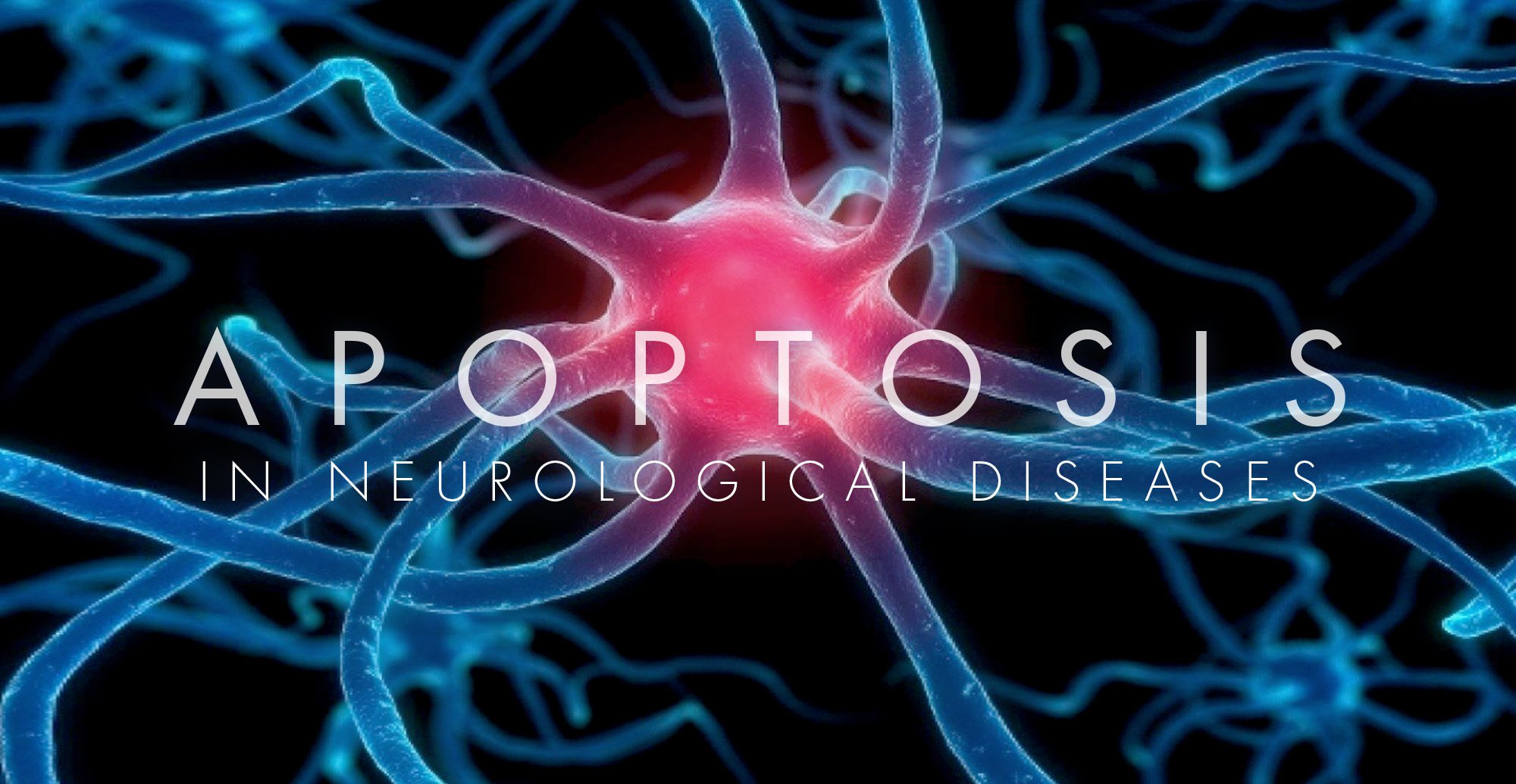 Απόπτωση στις νευρολογικές παθήσεις Ελ Πάσο, ΤΧ Χειροπράκτη