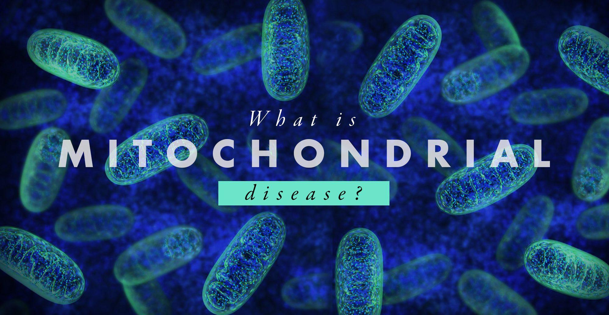 ミトコンドリア病とは? | テキサス州カイロプラクター、エルパソ
