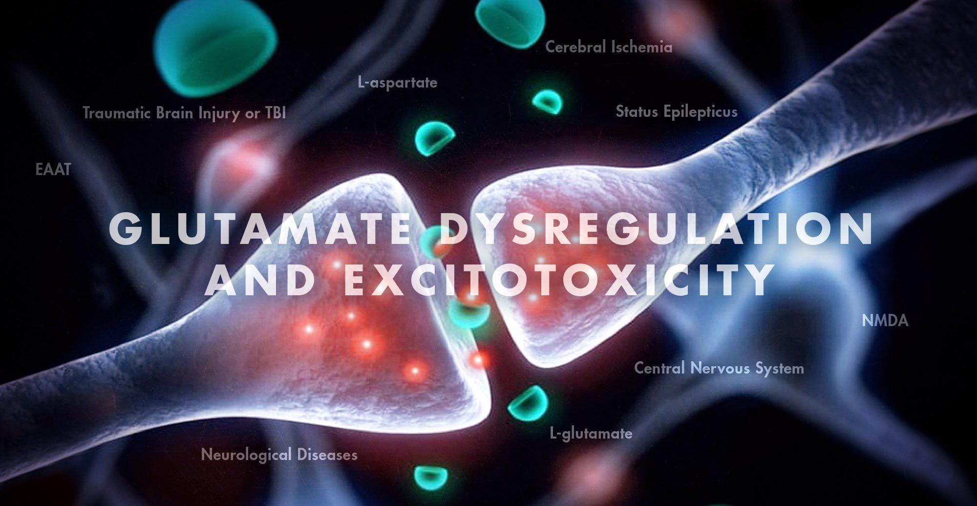 Glutamate Dysregulation and Excitotoxicity | El Paso, TX Chiropractor