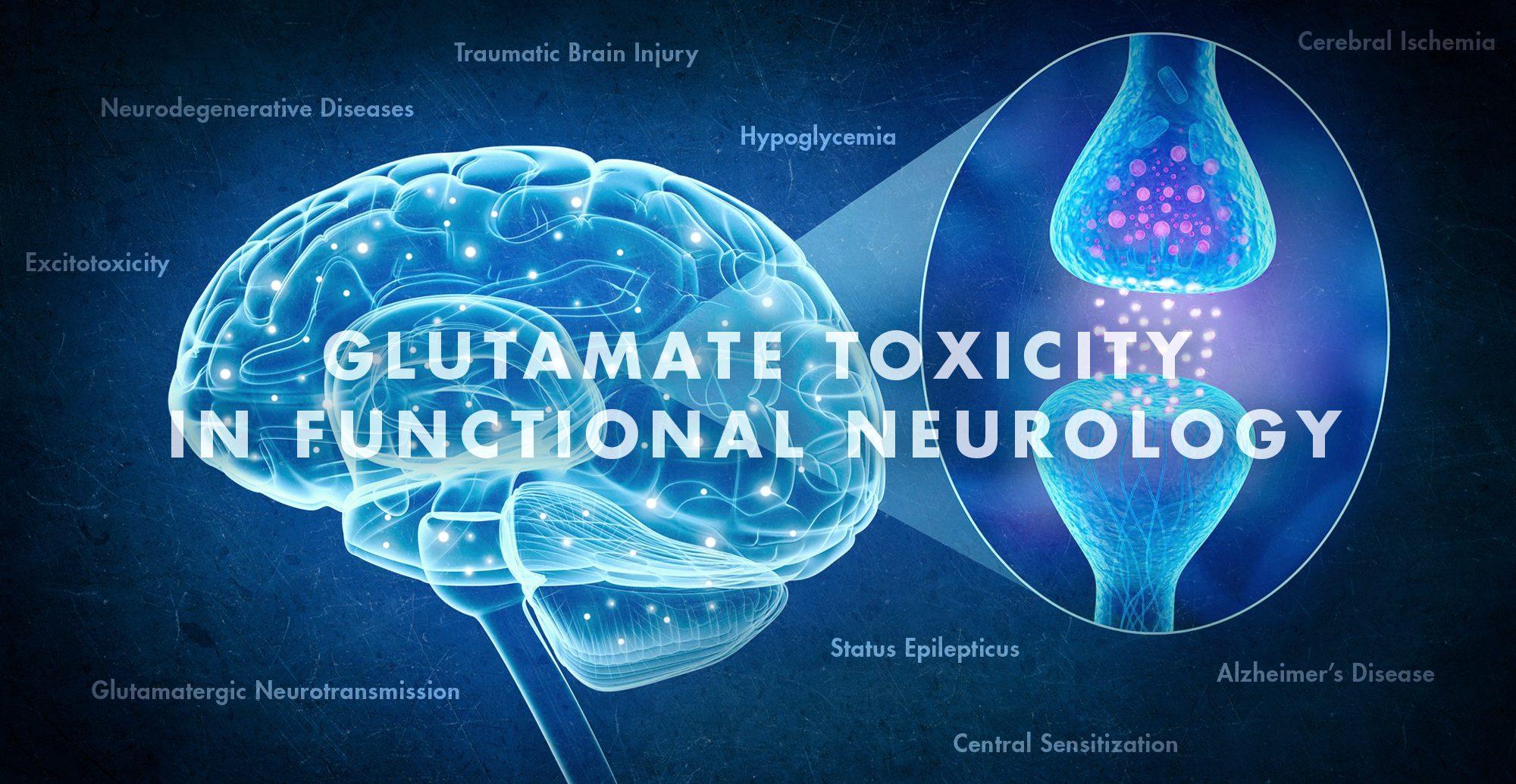 Toksisitas Glutamat dalam Neurologi Fungsional | El Paso, TX Chiropractor