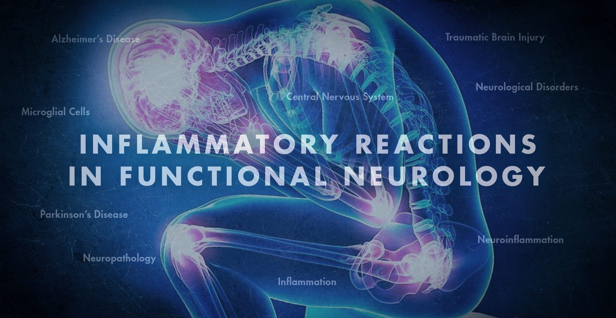Inflammatory Reactions in Functional Neurology | El Paso, TX Chiropractor