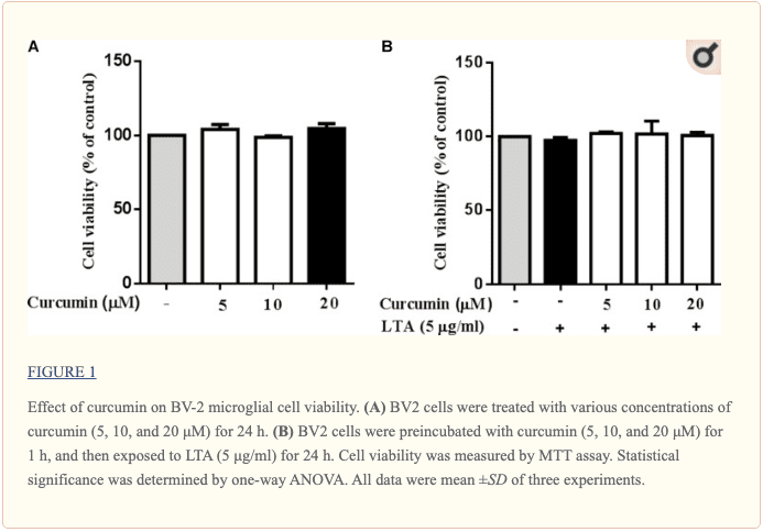 Figure 1 Effect of Curcumin on Microglial Cell Viability | El Paso, TX Chiropractor