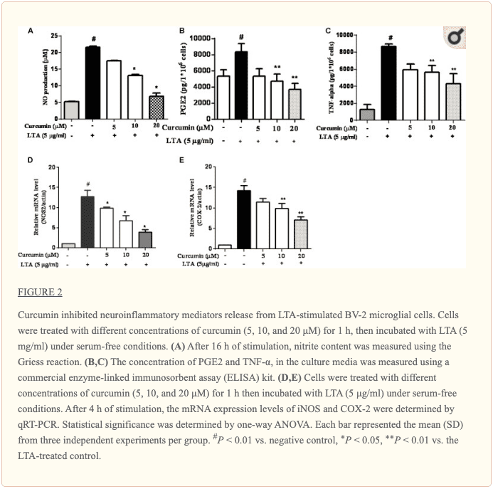 Figure 2 Curcumin Inhibited Neuroinflammatory Mediators | El Paso, TX Chiropractors