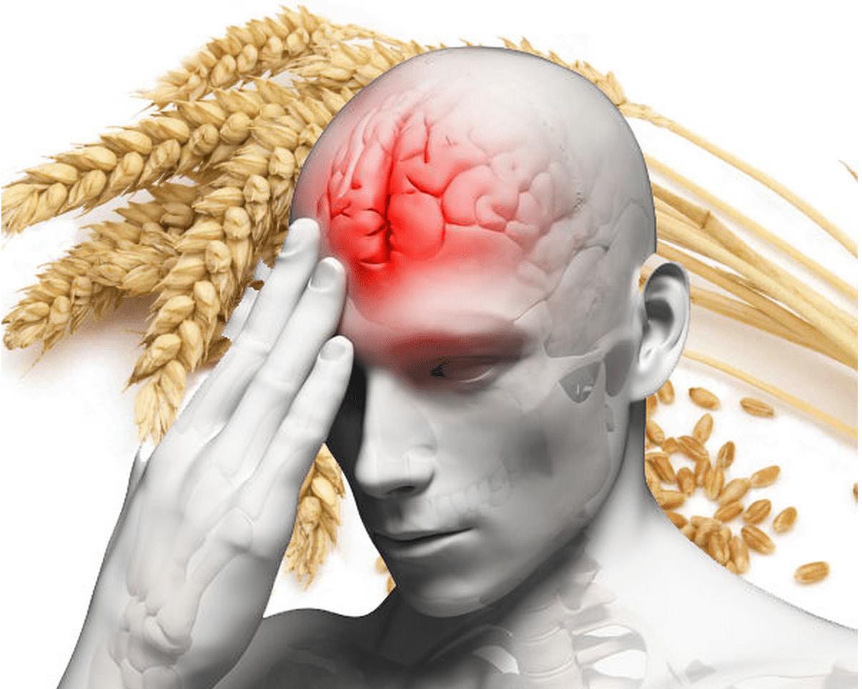 Funktionel neurologi: Glutenrelaterede problemer med hjernesundhed | El Paso, TX Kiropraktor