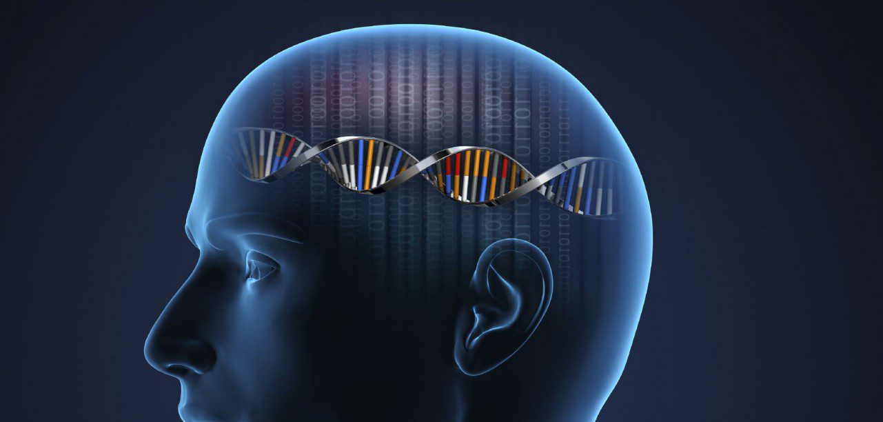 Neurologi Fungsional: Aktivasi Nrf2 untuk Penyakit Neurologis | El Paso, TX Chiropractor