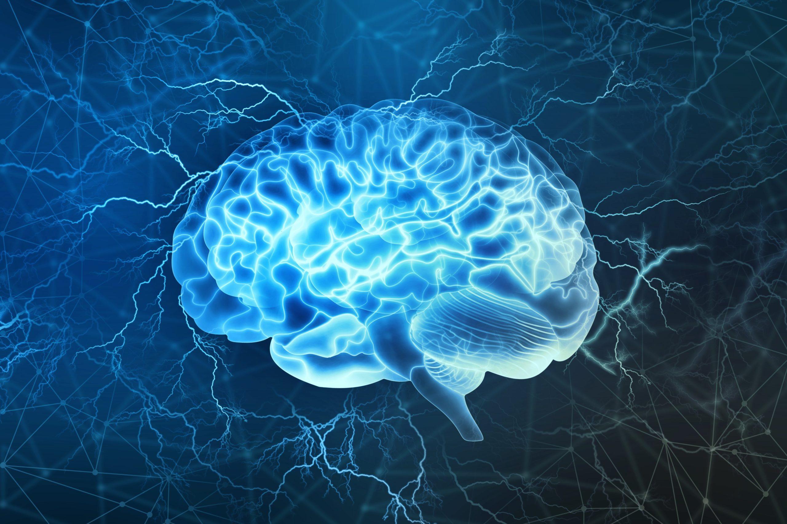 Функциональная неврология: допамин и здоровье мозга | Эль Пасо, Техас Хиропрактик | Эль Пасо, Техас Хиропрактик
