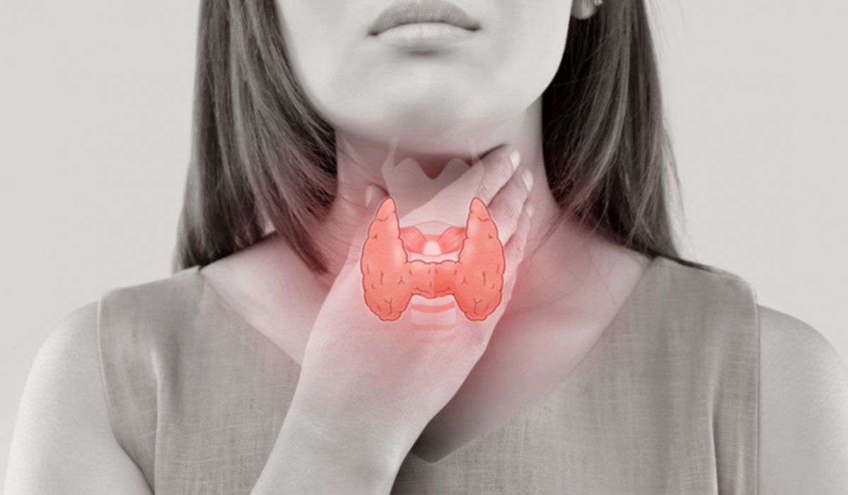 Functional Neurology: Obesity and Thyroid Dysfunction | El Paso, TX Chiropractor