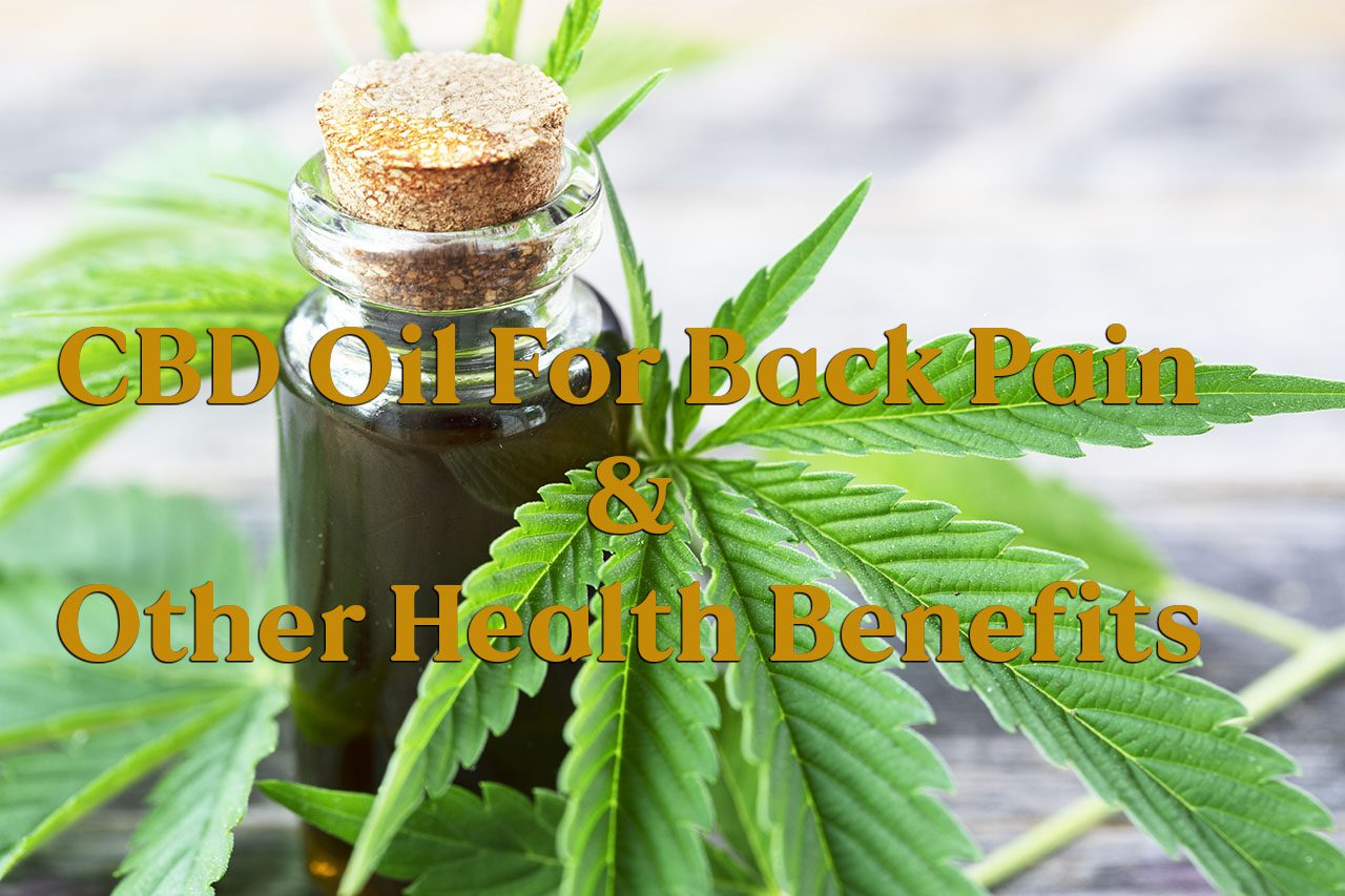 11860 Vista Del Sol, Ste. 128 olio di CBD per il mal di schiena e altri benefici per la salute