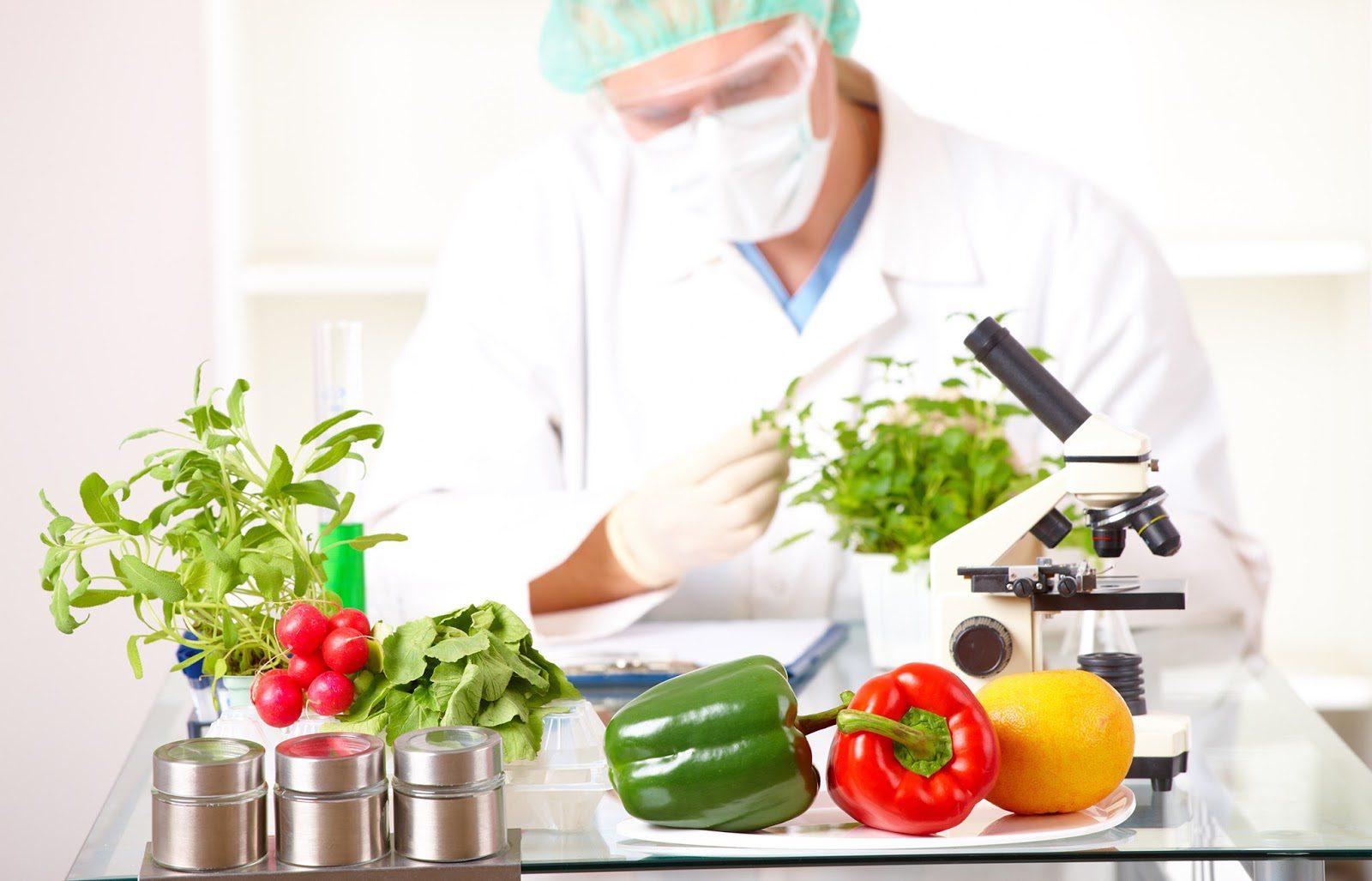 La connessione tra nutrizione ed epigenoma | El Paso, TX Chiropractor